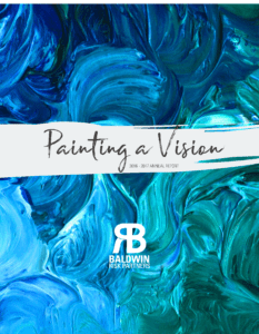Painting a Vision 2016-2017 Annual Report
